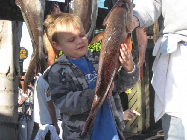 deep sea fishing large snapper