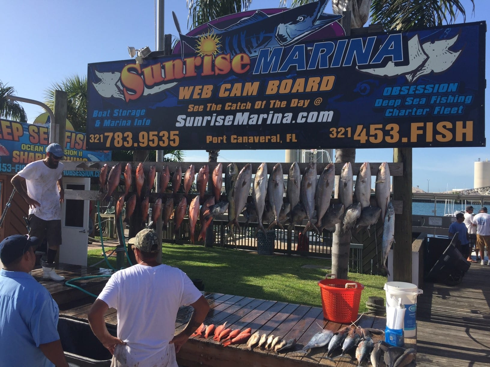 Deep Sea Fishing Port Canaveral catch